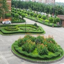 承接绿化工程