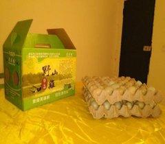 四川野鸡蛋