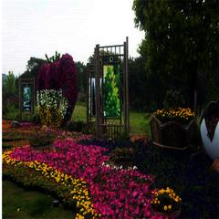 貴州綠化工程設計公司