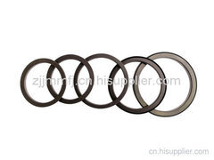 ABS磁性密封圈
