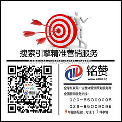 西安网络推广软件
