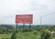 鑫丰农业地址