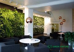 西安室内植物墙技术
