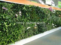 西安室内植物墙施工工艺