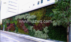 西安室内植物墙施工
