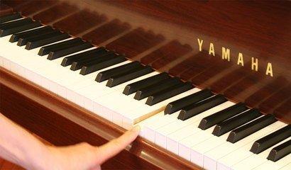 钢琴杂音的判断与处理