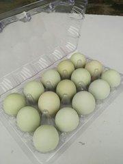 广西月饼专用红心新万博manbetx官网登录基地