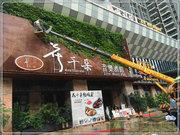成都旭锦园林有限公司餐厅客户植物墙绿化案例展示