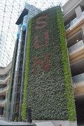 奥山广场立体绿化案例展示