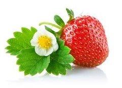 如何保存草莓?