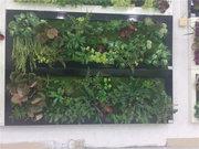 成都:屋顶绿化能享受100元/平方米补贴