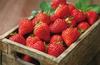 大渡口摘草莓的地方