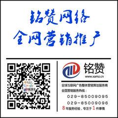 西安网络推广与网络营销