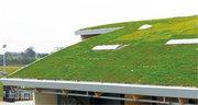 种植屋面防水材料必须具备的两个前提