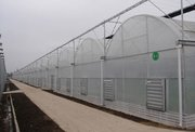 连栋温室大棚让作物生活空间更高*