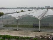 温室大棚主要种类