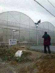 贵州温室大棚搭建