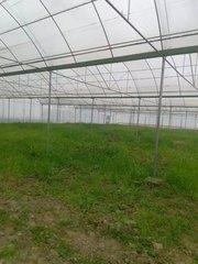 贵州温室大棚维修