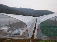 贵州温室大棚安装价格