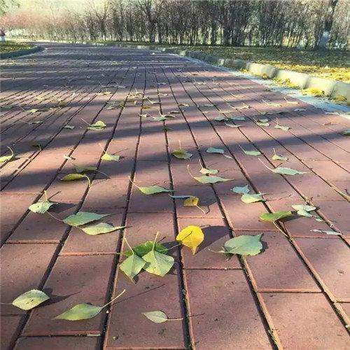 5,广场砖按设计尺寸划好线,划线时需预留间缝,间缝一般为5mm-12mm为