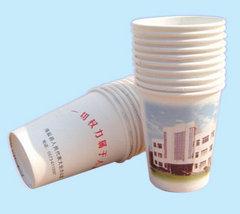 泉州纸杯厂家