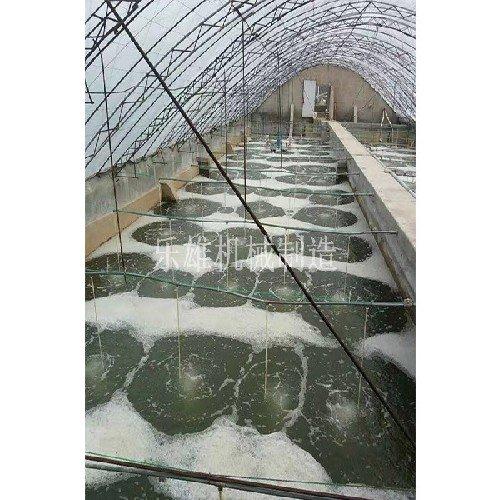 供应上海市热销微孔曝气增氧设备|微孔曝气增氧设备型号