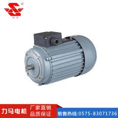 真空泵用电动机