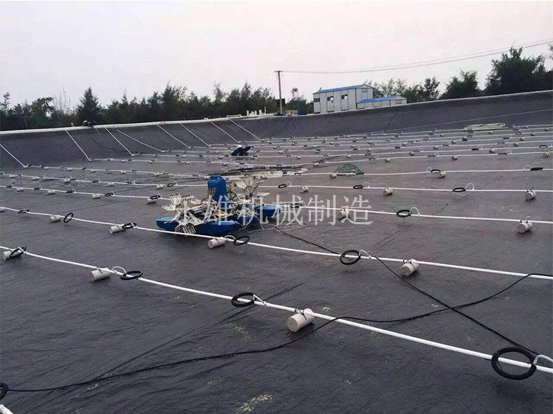 东莞微孔曝气管厂家|上海哪里有好的微孔曝气增氧设备