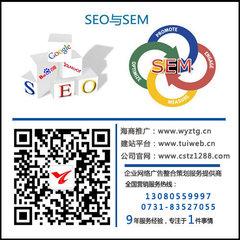 株洲网站优化公司
