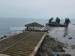 电厂海边栏栅物清理