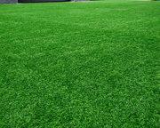 什么?2018世界杯球场铺设了新型人工草坪?