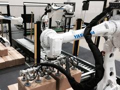 包裝箱碼垛機器人