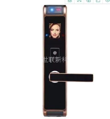 宁波人脸识别智能锁安装
