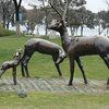 福州动物雕塑制作_福州雕塑