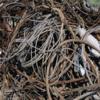 海南废铜回收电话