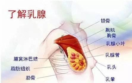 乳腺炎是不能热敷的