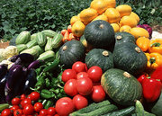 福州食材配送公司的責任與承諾