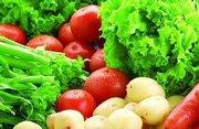 福州蔬菜配送公司有機蔬菜允許使用的肥料種類