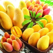 福州果蔬配送公司:夏季養生蔬菜