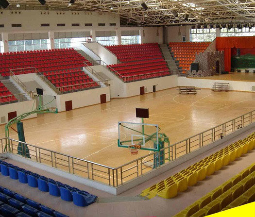 体育木地板品牌推荐_pvc运动塑胶地板