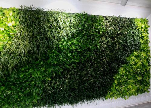 室內植物墻制作如何施工