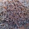 海南上门回收废铜