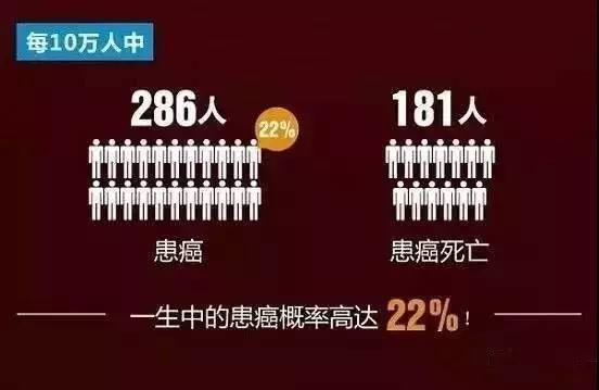 %E5%BE%AE%E4%BF%A1%E5%9B%BE%E7%89%87_20190106125356.jpg