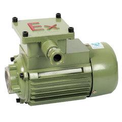 高壓隔爆型三相異步電動機