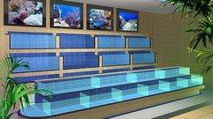 贵阳玻璃海鲜池定做价格是多少