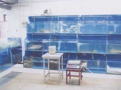 贵阳海鲜池设计厂家