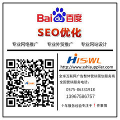新昌本地化網絡服務公司