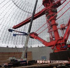 贵阳8-300吨专业吊车