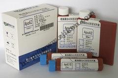 载脂蛋白A2测定试剂盒 ApoA2