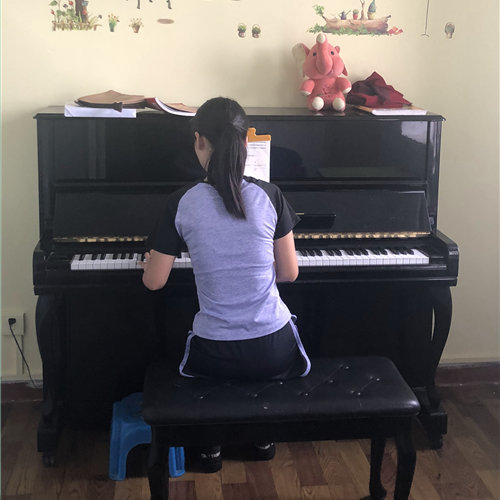 关于大学生及高中毕业生学习钢琴的情况分析